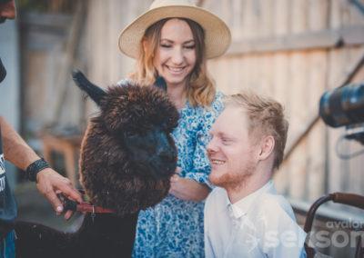 Zdjęcie zzakulis sesji. Zlewej strony mężczyzna zobsługi, którytrzyma obrożę alpaki. Łukasz zbliża twarz dopyska alpaki, uśmiecha się. Nadrugim planie uśmiechnięta Danusia głaszcząca pysk zwierzęcia.