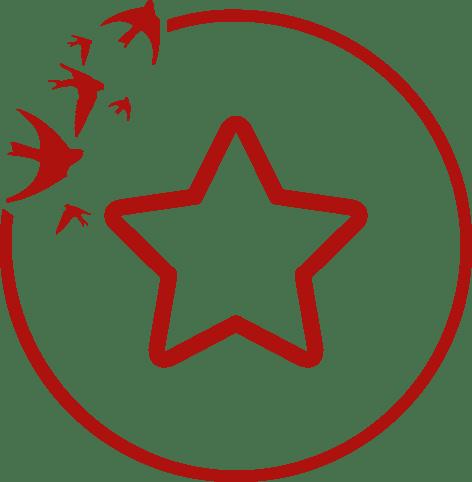 Ikona zgwiazdą pięcioramienną